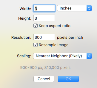 screenshot of image editor resize window